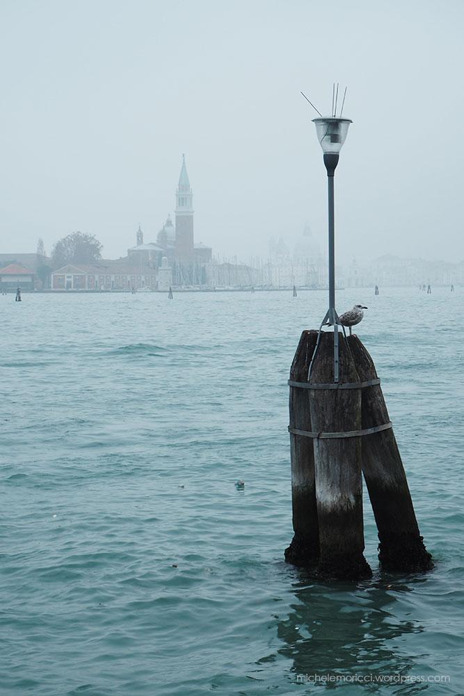 Moricci-Venice-15