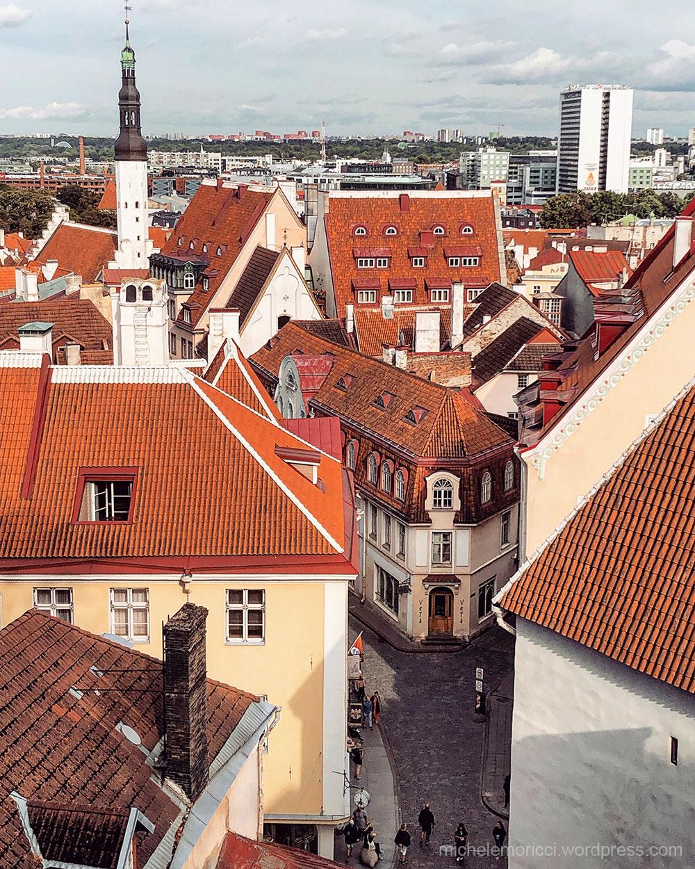 MMoricci-Tallinn-2019-32