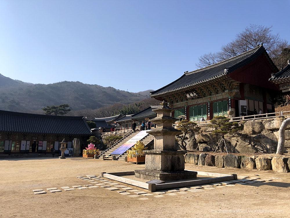 MMoricci-SouthKorea-Busan-2020-34